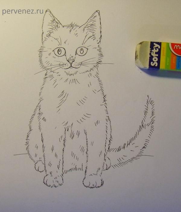 Рисовать рисунки котов