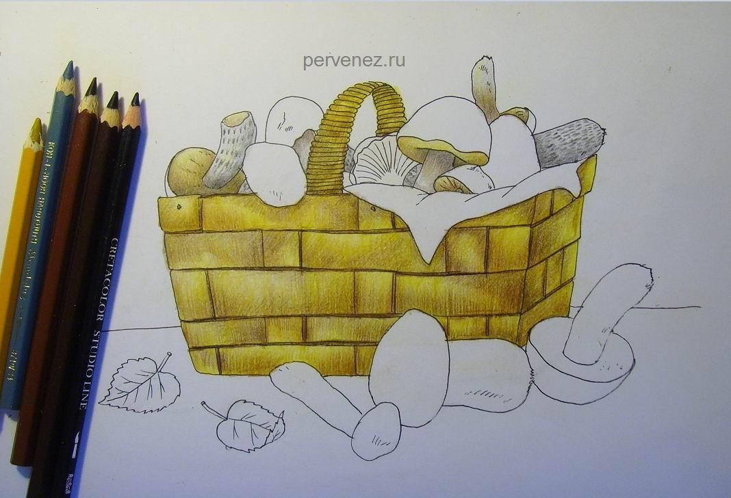 лукошко с грибами рисунок карандашом колокольчиками фото дизайна